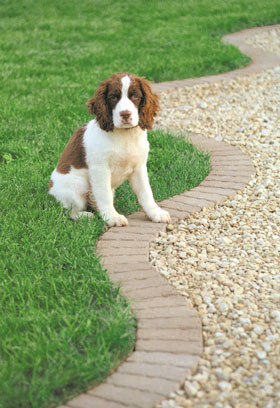 Handy-Edge landscape edging for your yard